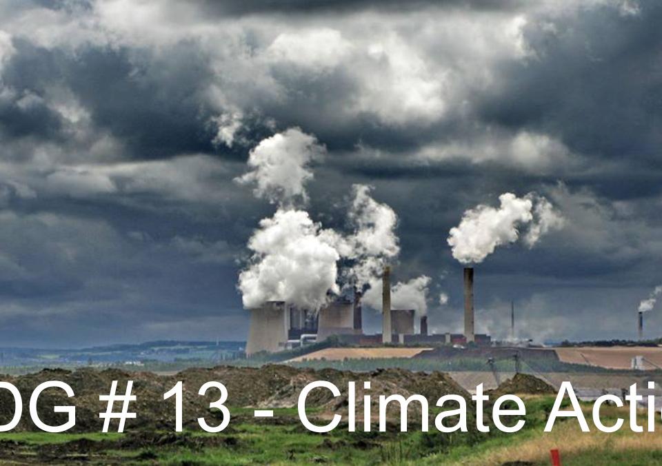 SDG # 13 - Climate Action
