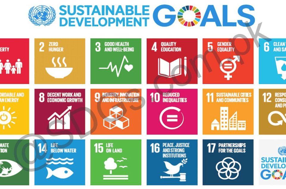 "Contribution of Universities to SDGs ""Global Ranking"""