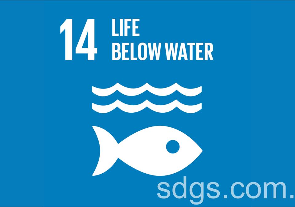 Life Below Water World Wildlife Day Celebrates.