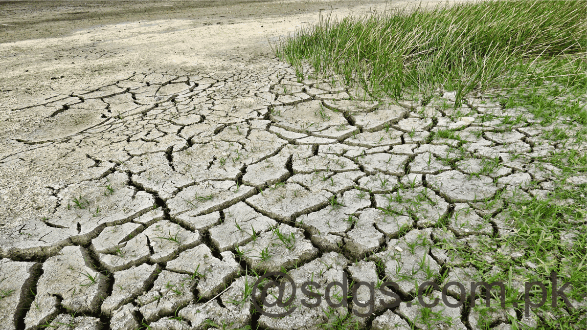 Discuss Sindh's Draft Climate Change Policy. Stakeholders