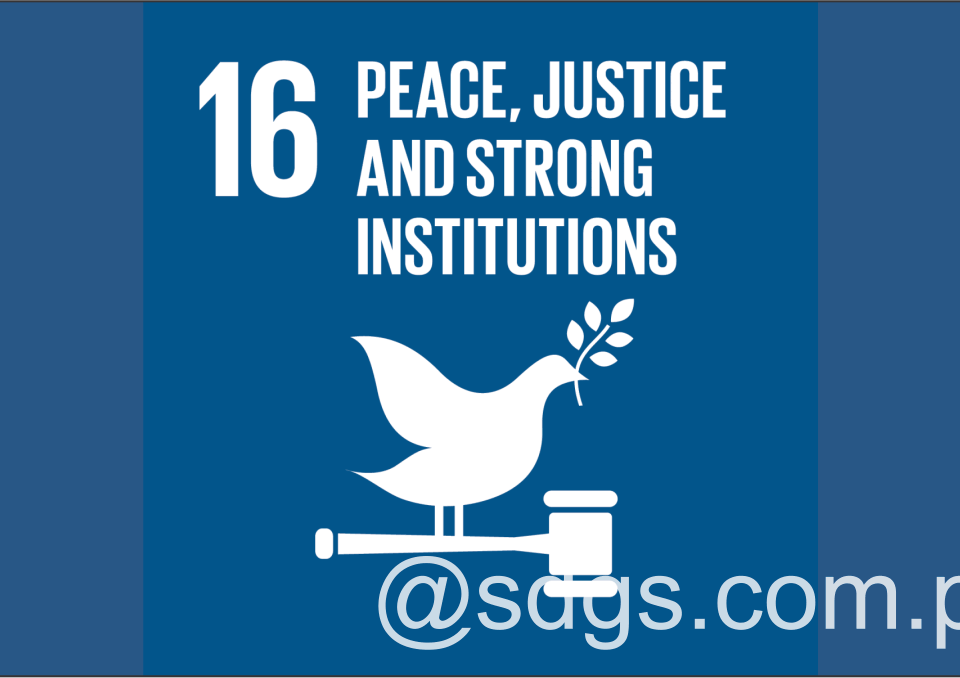 Discusses Institutional Aspects of SDG 161