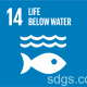 Nature's Dangerous Decline 'Unprecedented. UN Report