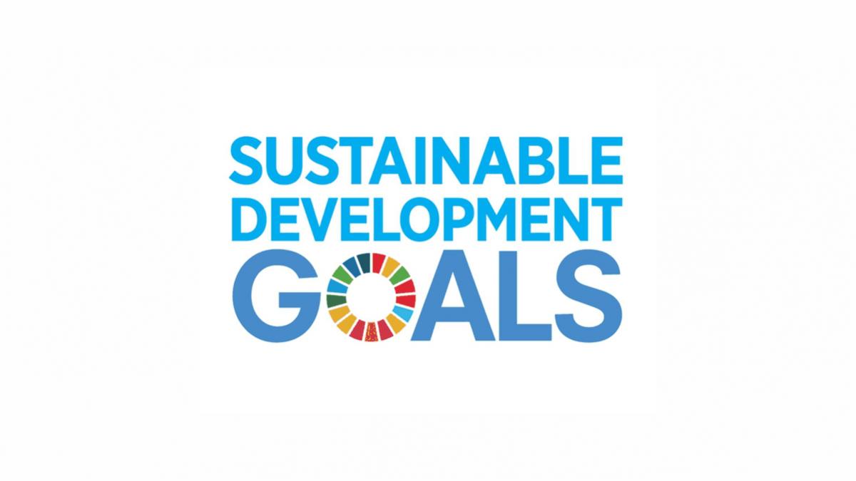SDGs as Improvement over ESG Framework
